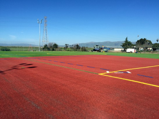 Artificial Grass Carpet Elk Plain, Washington High School Sports artificial grass