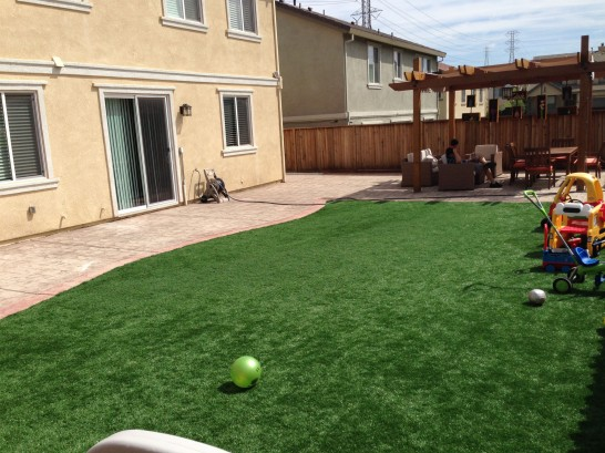 Artificial Grass Photos: Artificial Grass Carpet Morton, Washington Lawn And Garden, Backyards