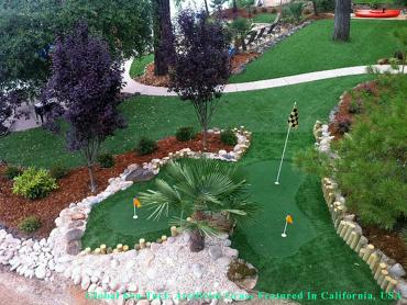 Artificial Grass Carpet Seattle, Washington Office Putting Green, Backyard Designs artificial grass