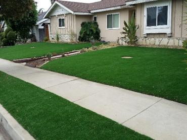 Artificial Grass Photos: Artificial Grass Carpet Terrace Heights, Washington City Landscape, Landscaping Ideas For Front Yard