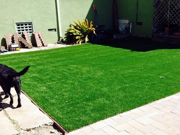 Artificial Grass Photos: Artificial Grass Installation Sekiu, Washington Rooftop, Dogs Park