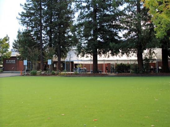 Artificial Grass Photos: Artificial Grass Lakeland North, Washington Playground Flooring, Parks