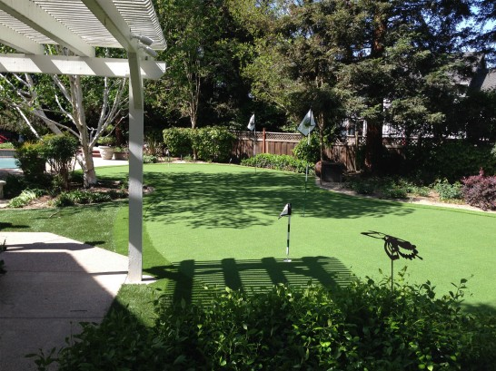 Artificial Grass Photos: Artificial Grass Rochester, Washington Lawns