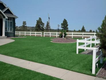 Artificial Grass Photos: Artificial Turf Installation Central Park, Washington Landscape Photos, Front Yard Landscaping