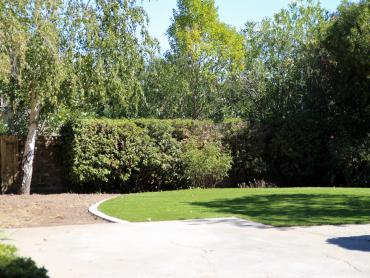 Artificial Grass Photos: Artificial Turf Installation Donald, Washington Gardeners, Backyard Design
