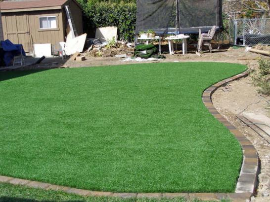 Artificial Grass Photos: Artificial Turf Installation North Bend, Washington Backyard Playground, Backyards