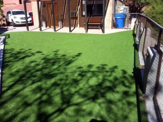 Artificial Grass Photos: Artificial Turf Roy, Washington Lawn And Landscape, Backyard Design