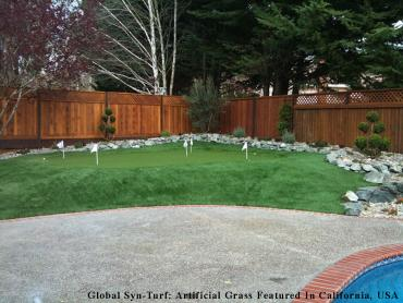 Best Artificial Grass Bryn Mawr-Skyway, Washington Office Putting Green, Backyard Garden Ideas artificial grass