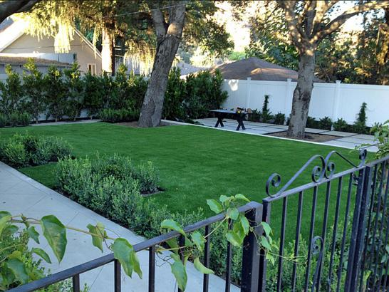 Artificial Grass Photos: Best Artificial Grass Fobes Hill, Washington Home And Garden, Front Yard Landscape Ideas