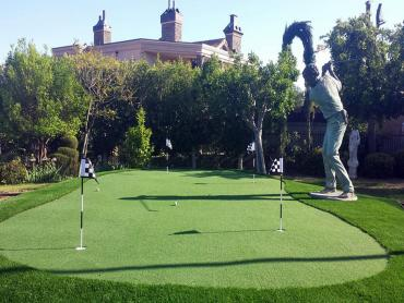 Artificial Grass Photos: Best Artificial Grass Grays River, Washington Outdoor Putting Green, Backyard Garden Ideas