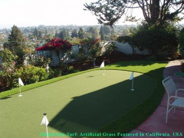 Artificial Grass Photos: Best Artificial Grass Kirkland, Washington Backyard Putting Green, Small Backyard Ideas