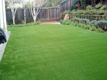 Artificial Grass Photos: Best Artificial Grass Lyman, Washington Backyard Deck Ideas, Backyards