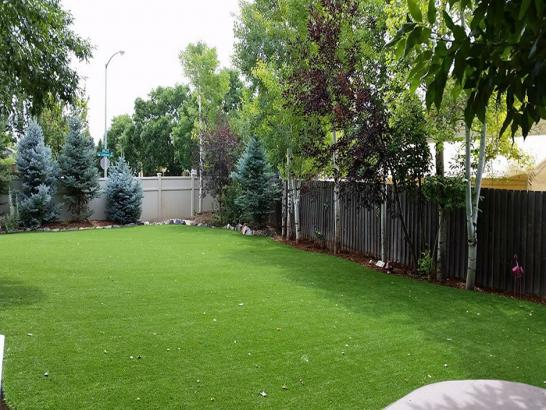 Artificial Grass Photos: Best Artificial Grass Shaker Church, Washington Fake Grass For Dogs, Backyard