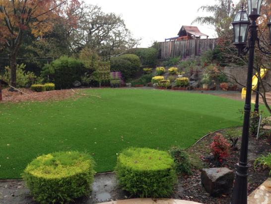 Artificial Grass Photos: Fake Grass Carpet Hatton, Washington Lawn And Garden, Backyard Garden Ideas