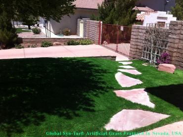 Grass Turf Burien, Washington Pictures Of Dogs, Front Yard Landscaping Ideas artificial grass