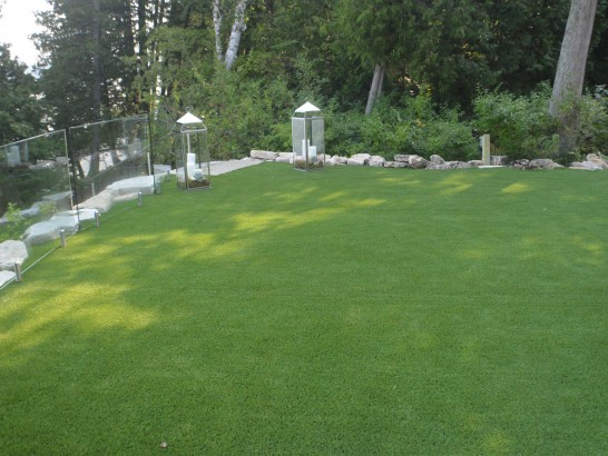 Artificial Grass Photos: Green Lawn Sudden Valley, Washington Design Ideas, Backyard Design
