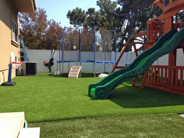 Artificial Grass Photos: How To Install Artificial Grass Sisco Heights, Washington Landscaping Business, Backyard Landscape Ideas