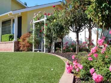 Artificial Grass Photos: Lawn Services Neah Bay, Washington Landscaping Business, Front Yard Ideas