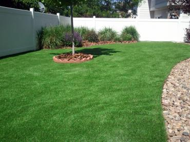 Artificial Grass Photos: Outdoor Carpet Esperance, Washington Backyard Deck Ideas, Backyard Designs