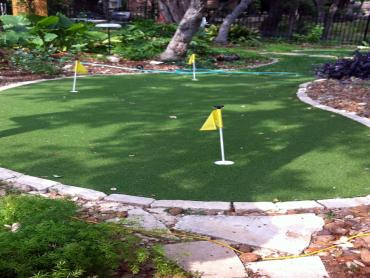 Artificial Grass Photos: Outdoor Carpet Ruston, Washington City Landscape, Backyard Landscaping