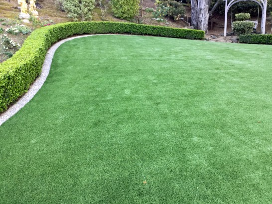 Artificial Grass Photos: Plastic Grass Eatonville, Washington Lawn And Garden, Backyard Makeover