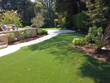 Artificial Grass Photos: Plastic Grass Gold Bar, Washington Backyard Deck Ideas, Beautiful Backyards