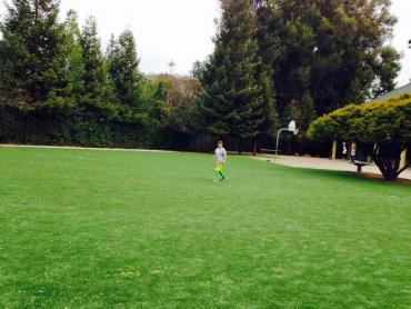 Artificial Grass Photos: Plastic Grass Oyehut, Washington Football Field, Recreational Areas