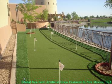 Synthetic Grass Cost Clyde Hill, Washington Outdoor Putting Green, Backyard Makeover artificial grass