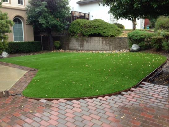 Fake grass lake mcmurray washington lawns backyard for Cost to landscape front yard
