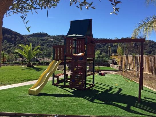 Artificial Grass Photos: Synthetic Grass Langley, Washington Home And Garden