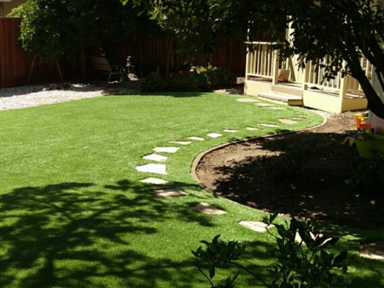 Synthetic Grass Napavine, Washington Landscaping, Backyard Design artificial grass