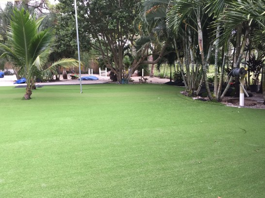 Artificial Grass Photos: Synthetic Grass Roslyn, Washington Landscape Photos, Commercial Landscape