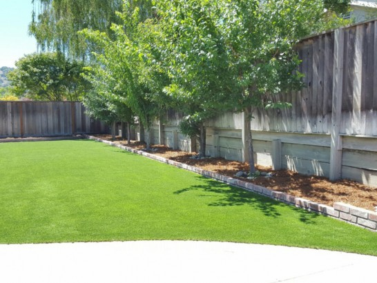 Synthetic Lawn Acme, Washington Gardeners, Backyard Designs artificial grass