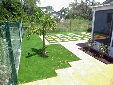 Artificial Grass Photos: Synthetic Lawn Meadowdale, Washington City Landscape, Backyard Landscaping