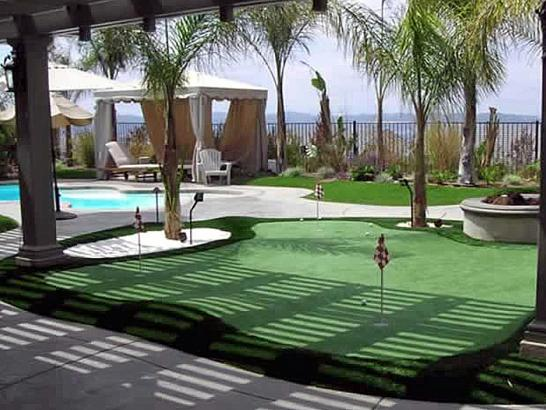 Artificial Grass Photos: Synthetic Lawn Sumner, Washington Backyard Playground, Backyard Makeover