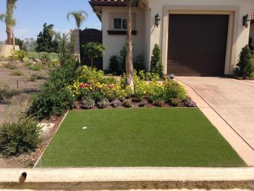 Artificial Grass Photos: Synthetic Turf Cliffdell, Washington Landscape Design, Front Yard Landscaping Ideas