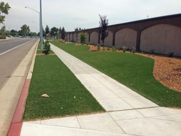 Synthetic Turf Marrowstone, Washington Landscaping, Commercial Landscape artificial grass