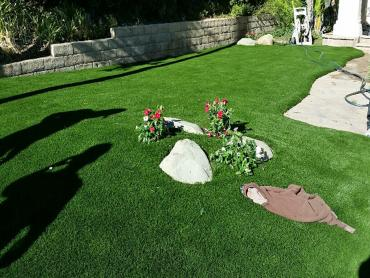 Artificial Grass Photos: Synthetic Turf Supplier Naselle, Washington Lawns, Front Yard