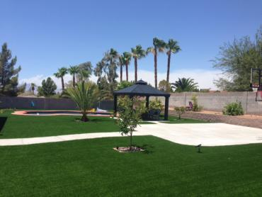 Artificial Grass Photos: Synthetic Turf Supplier Shoreline, Washington Garden Ideas, Backyard Designs
