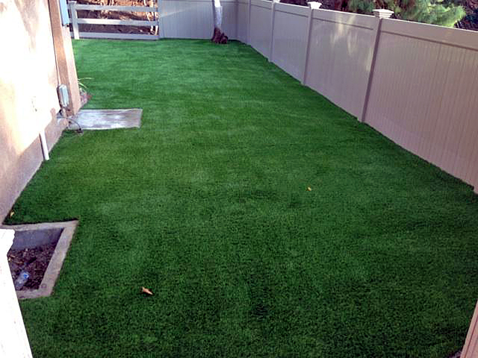 Genial Artificial Grass Seattle, Washington